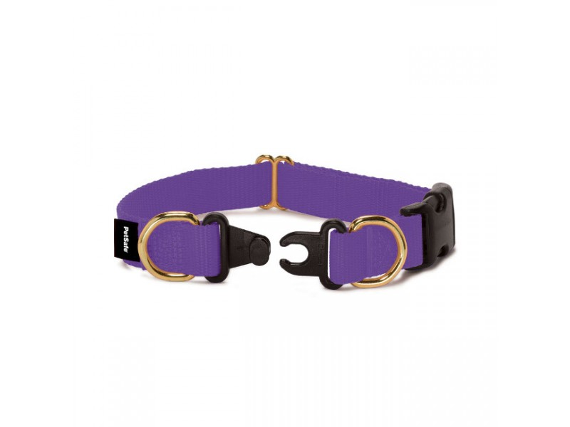 KeepSafe® Break-AwayCollar
