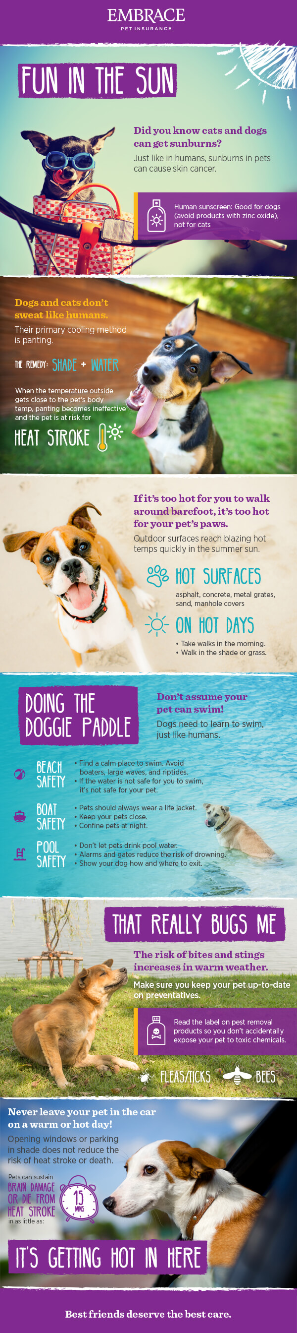 Embrace Summer Infographic