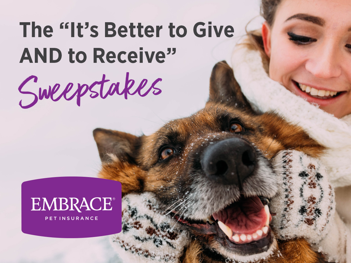 Embrace Giving Sweepstakes