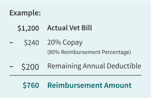 Copay then Deductible Example
