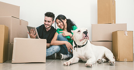 couple-and-dog-surrounded-by-moving-boxes