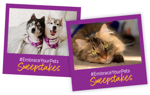 #EmbraceYourPets Sweepstakes Entries