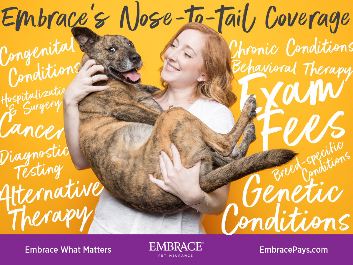 Embrace Pet Insurance Coverage