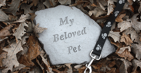 pet burial head stone