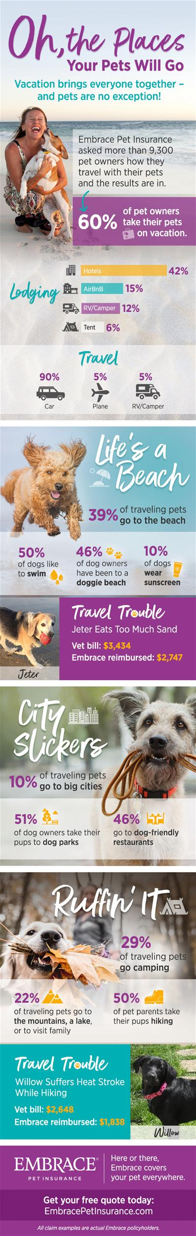 Pet-Travel-Infographic
