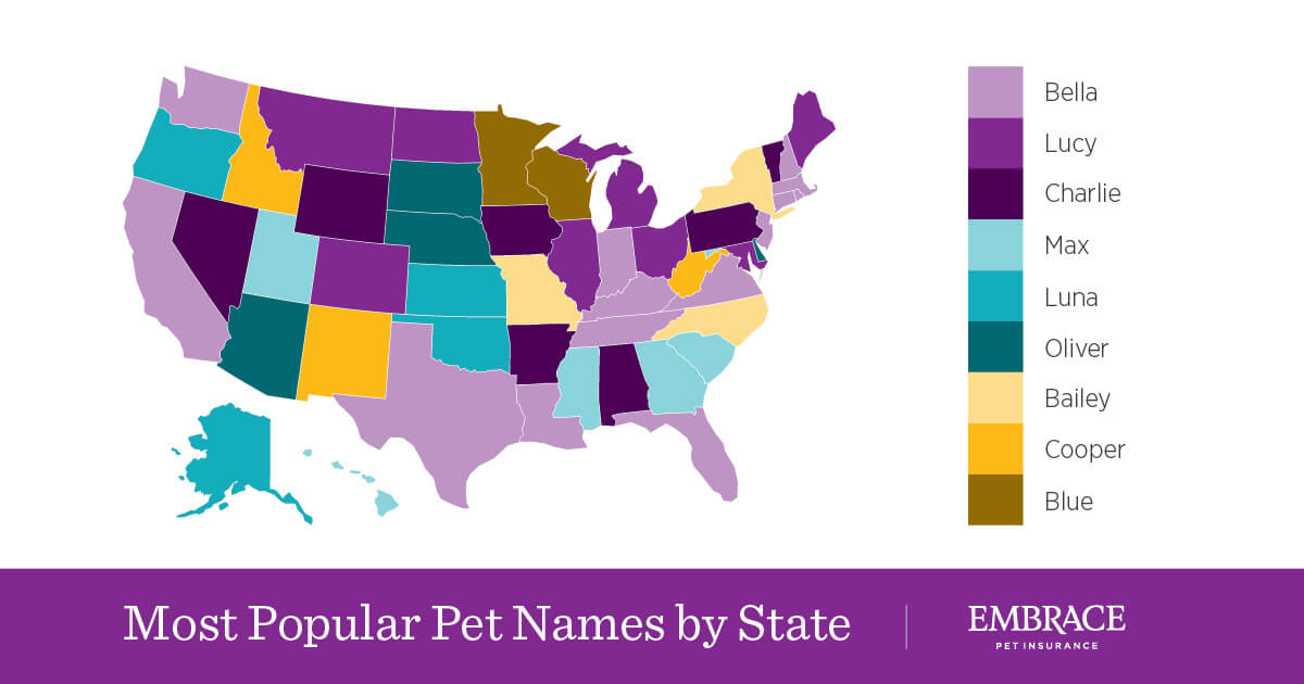 Most Popular Pet Names by State