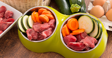 Raw-Meat-and-Vegetables-in-Dog-Bowl