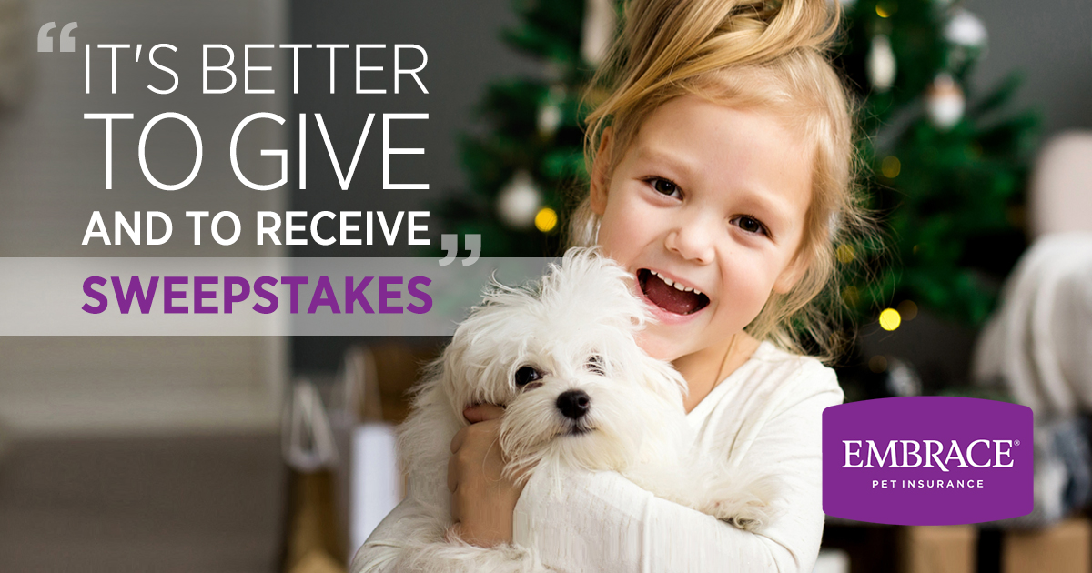 The Give and Receive Sweepstakes 2019