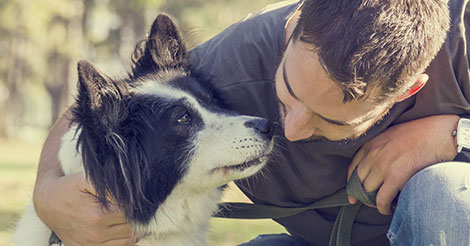 White Man with Border Collie
