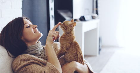 woman booping orange cat on nose