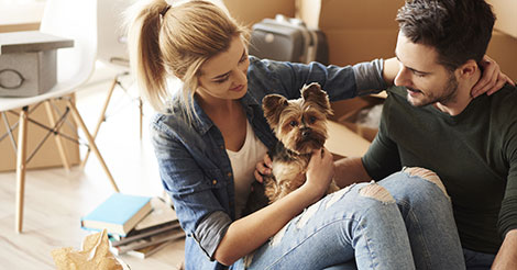 young couple unpacking with their yorkshire terrier