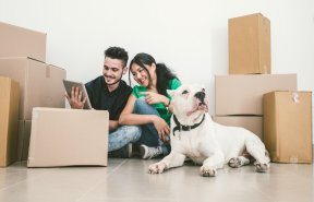 A couple and their dog sit among stack boxes for moving